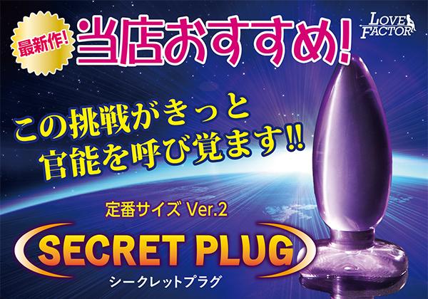 SECRET PLUG シークレットプラグ Ver.2