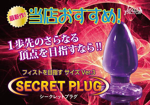 SECRET PLUG シークレットプラグ Ver.3